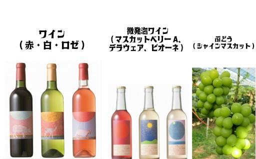 選べる「ワイン&微発砲ワイン」とぶどう(シャインマスカット1kg)セット