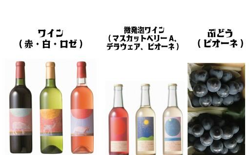 選べる「ワイン&微発砲ワイン」とぶどう(ピオーネ2kg)セット