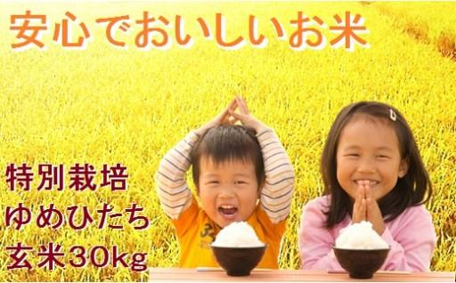 B-0503 天皇杯受賞農家「横田農場」の特別栽培米ゆめひたち(玄米30kg)