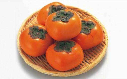 A142:富有柿