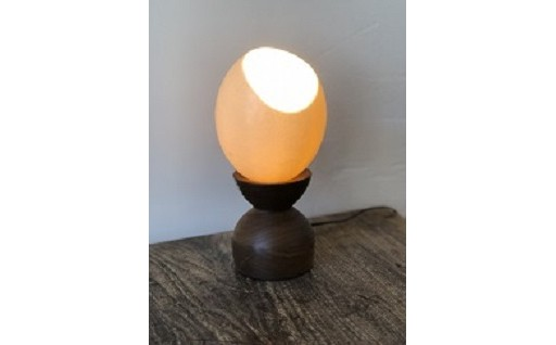 4-031 だちょうの卵のスタンドランプ
