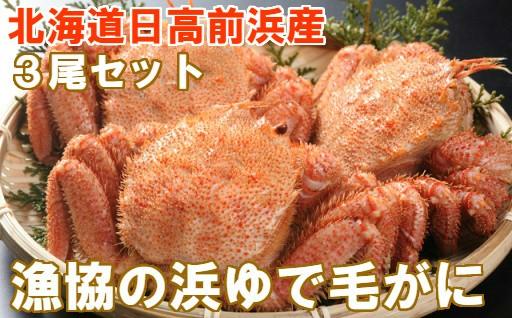 [02-148]北海道日高産 漁協直送 浜ゆで毛がに3尾セット【冷凍】