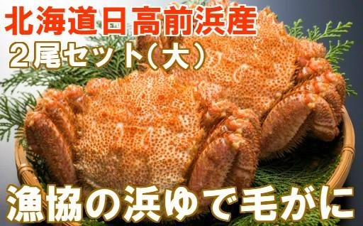 [02-275]北海道日高産 漁協直送 浜ゆで毛がに(大)2尾セット【冷凍】