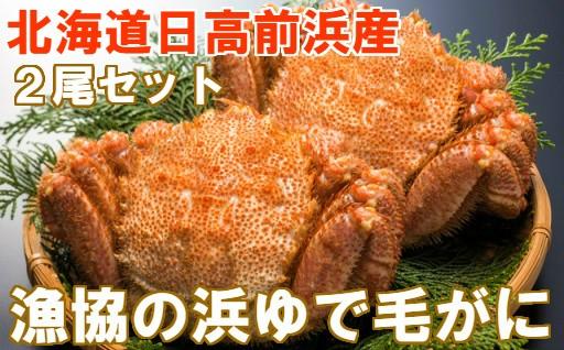 [02-036]北海道日高産 漁協直送 浜ゆで毛がに2尾セット【冷凍】