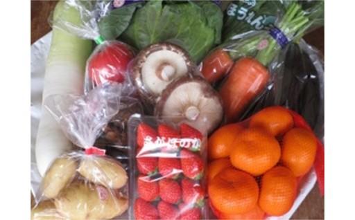 18114.野菜と旬の果物詰合せ