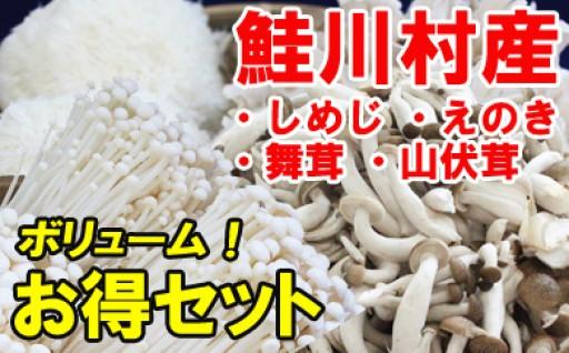 鮭川村産きのこボリュームお得セット