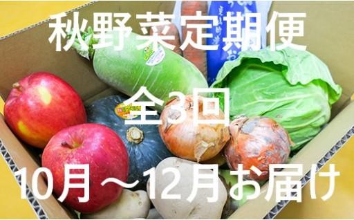 栗山農産物直売所値ごろ市「秋野菜定期便」3回