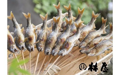 A-1 【4月~5月お届け】早月あゆ(塩焼き) 成魚になる前のやわらかい鮎