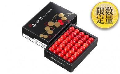 [№5805-1830]■温室栽培 山形産「紅秀峰」500g化粧箱詰