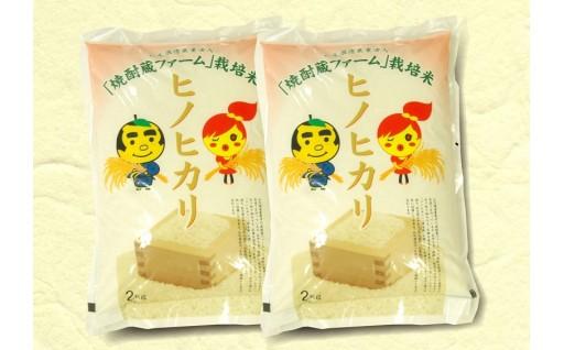 Z-602 焼酎蔵ファーム栽培米「ヒノヒカリ」