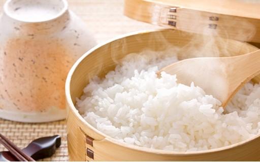 [№5537-0001]長野県山形村のお米 29年度産コシヒカリ 8kg
