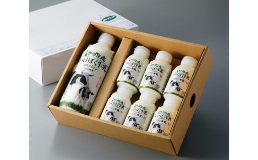 C13 プチ贅沢ないけぼく牛乳 頒布会[高島屋選定品〕