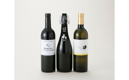 C11微発泡・デラウェアの旨み・熟成を楽しむワインセット[高島屋選定品〕
