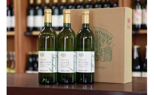 [30060] 信州まし野ワイン 白ワイン3本セット