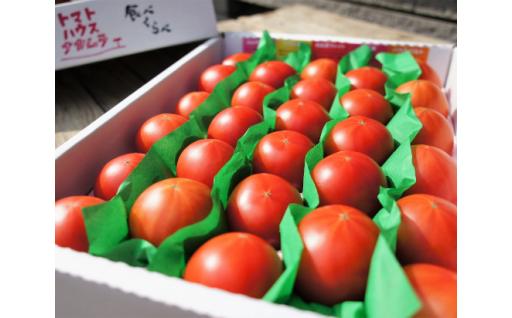AA-26.フルーツトマト食べ比べセット