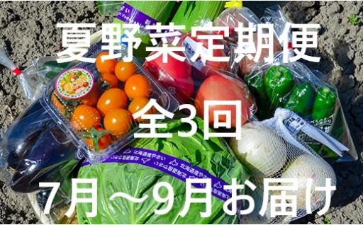 栗山農産物直売所値ごろ市「夏野菜定期便」3回