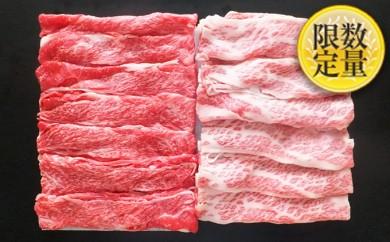 [№5805-1691]高橋畜産 山形県産黒毛和牛スライスセット(2種)600g