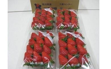 三豊市産 幻の品種女峰いちご 約1kg