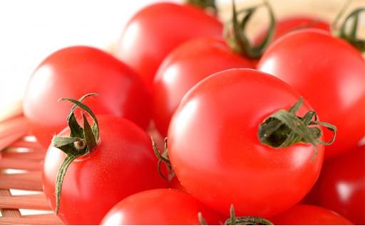[№5525-0187]北海道幻の高糖度フルーツミニトマト【ネネ】約3kg