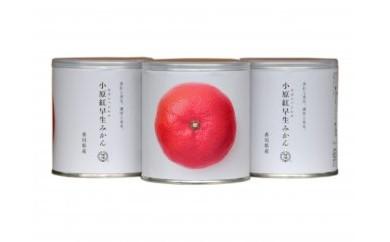 瀬戸内国際芸術祭2016モデル 小原紅みかん缶詰 3缶セット