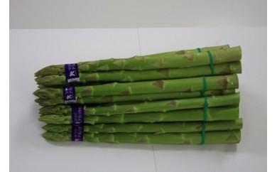 柔らかさが際立つ春芽 アスパラガス 1kg