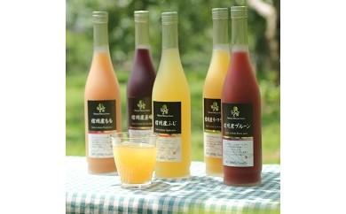 信州産くだもの果汁100%ジュース500ml×5本セット【A106】