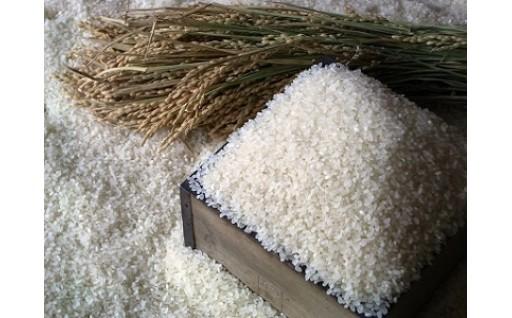 070001. 「豊作米Ⓡ」ゆめぴりか6ヵ月コース