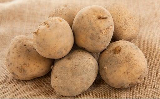 [№5525-0183]北海道伊達市上長和産特選馬鈴薯(わせしろ)約10kg