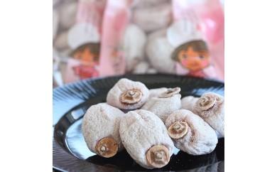 南信州に伝わる伝統の味「市田柿」 500g×6袋【予約受付・冬発送】【A133】