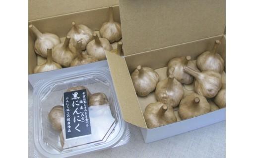 No.594 黒にんにく L玉 2箱・M玉 1パック (九州/大分産)【30pt】