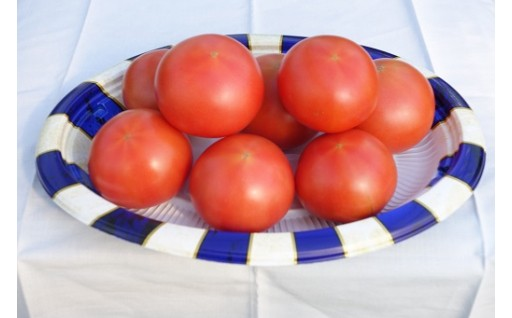 美里町産「ぜいたくトマト(R)」1kg箱入【機能性農産物!高糖度・高リコピン】[0005-3401]