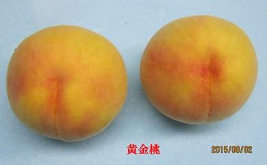 黄金桃(2Kg)