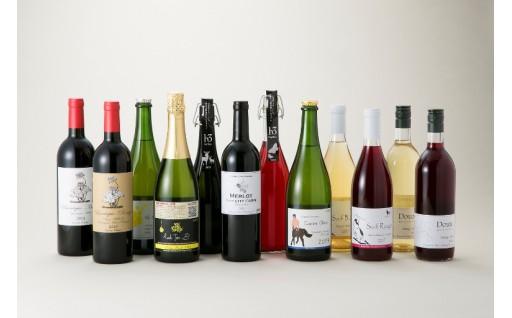 H5 ヒトミワイン飲み比べ12本セット[高島屋選定品〕