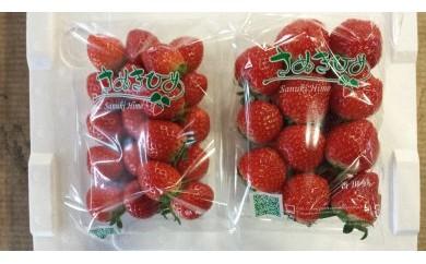 【お徳用】果汁たっぷり さぬきひめ苺 約5kg