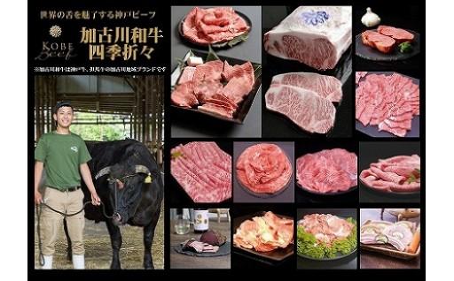 自社牧場直送加古川和牛食べ尽くし四季折々定期便