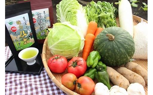 T16(2)-3701_季節に合わせた都城茶と都城野菜のセット定期便(2回)