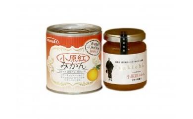 【お試し各1ヶ】香川県産 小原紅みかん製品セット