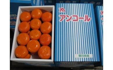 希少な果実!「アンコールオレンジ」 5kg