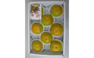 サクサクした食感 太秋柿(たいしゅうがき)3kg