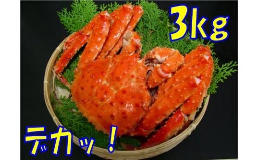 80-6 【数量限定】とれたて新鮮!!北海道オホーツク産海明けタラバガニ姿