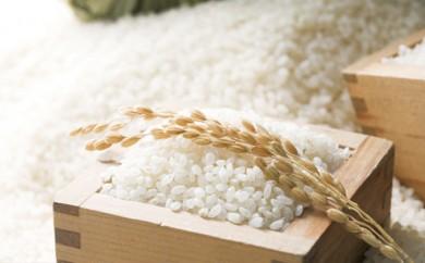 [№5665-0306]北海道赤平産きたくりん特別栽培米5kg×2袋