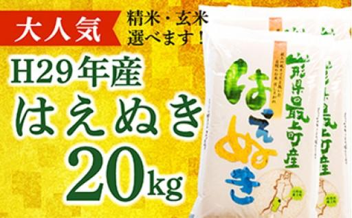026-001【精米】山形県最上町産はえぬき20kg