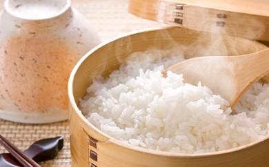 [№5665-0305]北海道赤平産きたくりん特別栽培米5kg