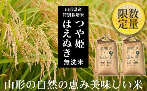 [№5805-2000]【山形産2銘柄食べ比べ】つや姫・はえぬき 無洗米各15kg
