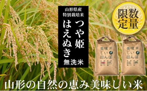 [№5805-2001]【山形産2銘柄食べ比べ】つや姫・はえぬき 無洗米各10kg