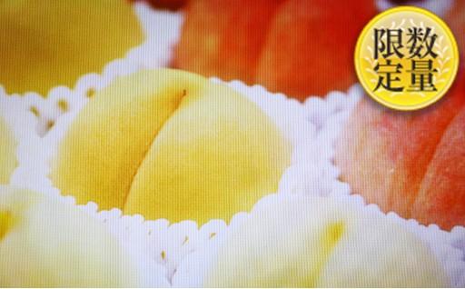 [№5805-2087]山形産 桃(白桃と黄桃食べ比べセット)約3kg7~11玉