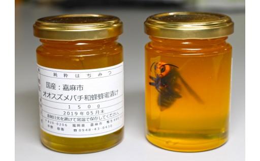 IG01-02 稀少!オオスズメバチ蜂の蜂蜜漬け 限定