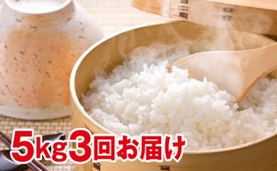 [№5665-0307]北海道赤平産きたくりん特別栽培米5kg×3回お届け