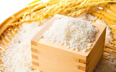 [№5791-0148]低温製法米 無洗米 宮城県産ひとめぼれ 5kg