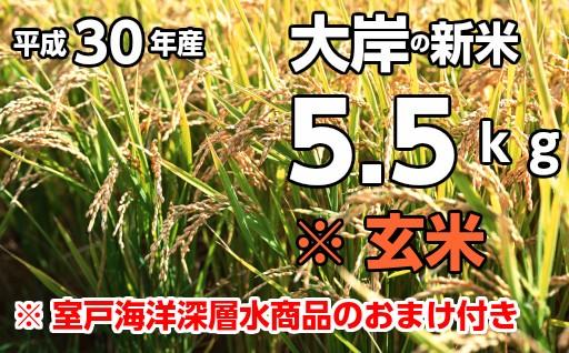 OO-02平成30年産新米5.5kg大岸夢田穂【玄米】